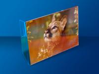 porta-retratos-650x450---03